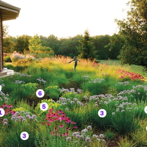 Photo of Matrix Planting: Plant IDs – FineGardening