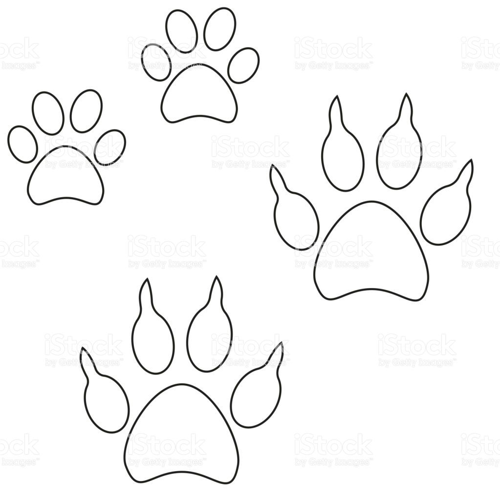 Line Art Cat Dog Paw Footprint Icon Set Poster Black And White