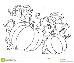 Pumpkin Vines Coloring Pages on a budget