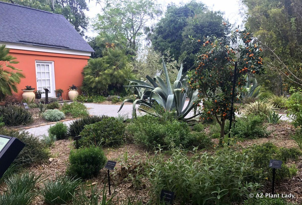 The Xeriscape Garden At The Coastal Georgia Botanic Gardens