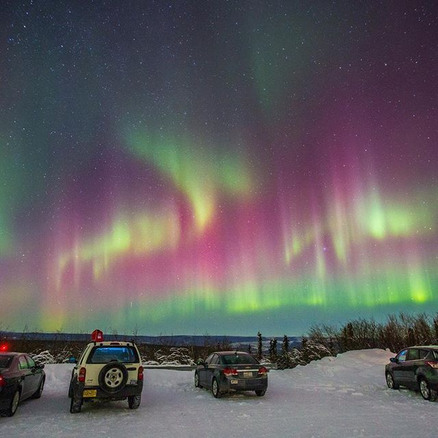 Want to see the World's Best Light Show? With @Gondwana_Ecotours you can see the aurora borealis, soak in a steamy hot spring, savor Alaskan seafood, have a drink at an ice bar, try curling, and dogsled through a winter wonderland! Follow @Gondwana_Ecotours and click the link in their profile to learn more. Photo by @spoart taken on Gondwana's Northern Lights Adventure. #soultravelers