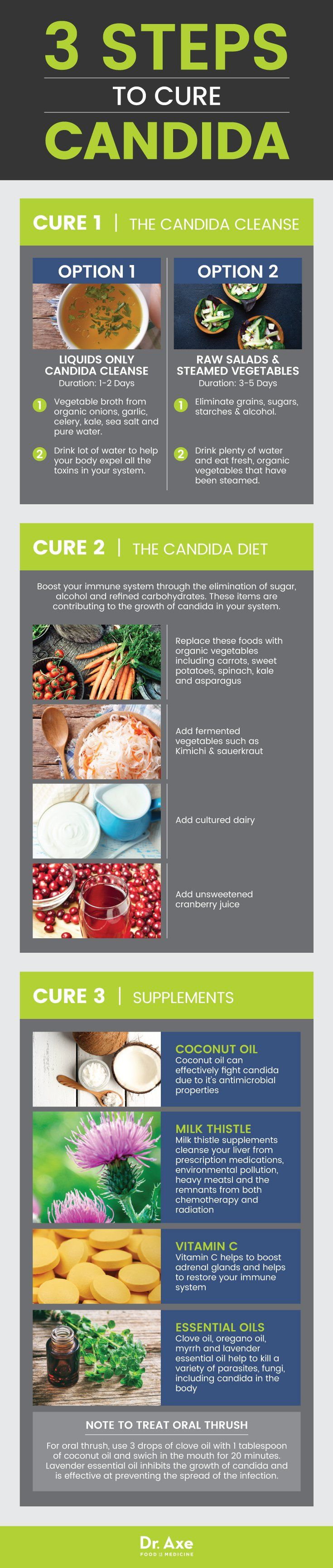 dr axe candida diet plan