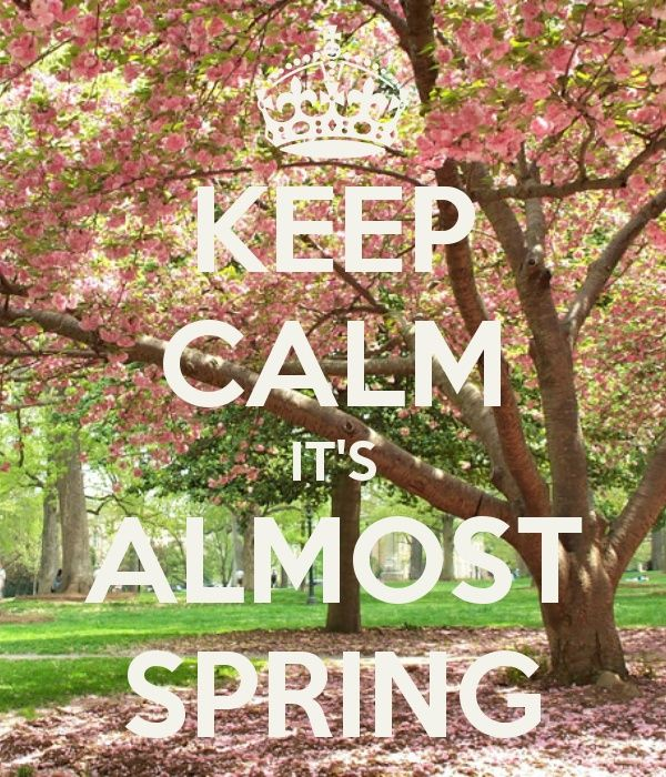 c2d5085a23667 spring is almost here... | To Keep Calm | Keep calm, Keep calm ...