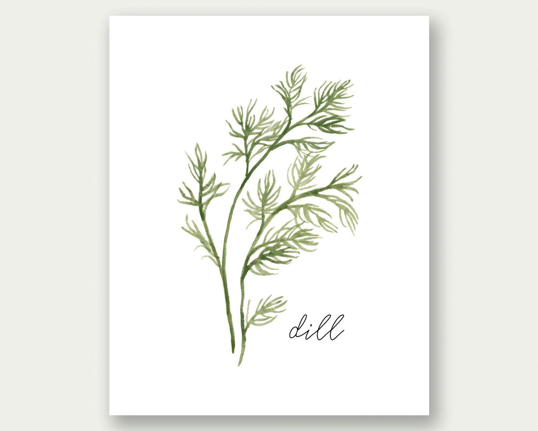 Herbs Printable, Dil