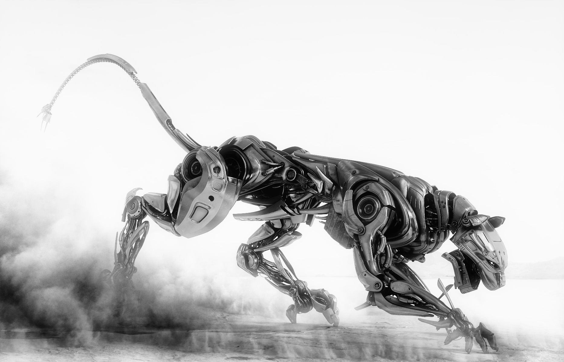 panther robot - Google Search | Photo projects | Pinterest ...