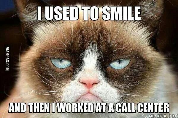 Videos Cats Funny Product ID2155809972 Grumpy cat