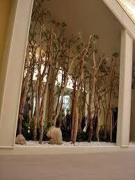 ผลการค้นหารูปภาพสำหรับ 대나무 실내조경