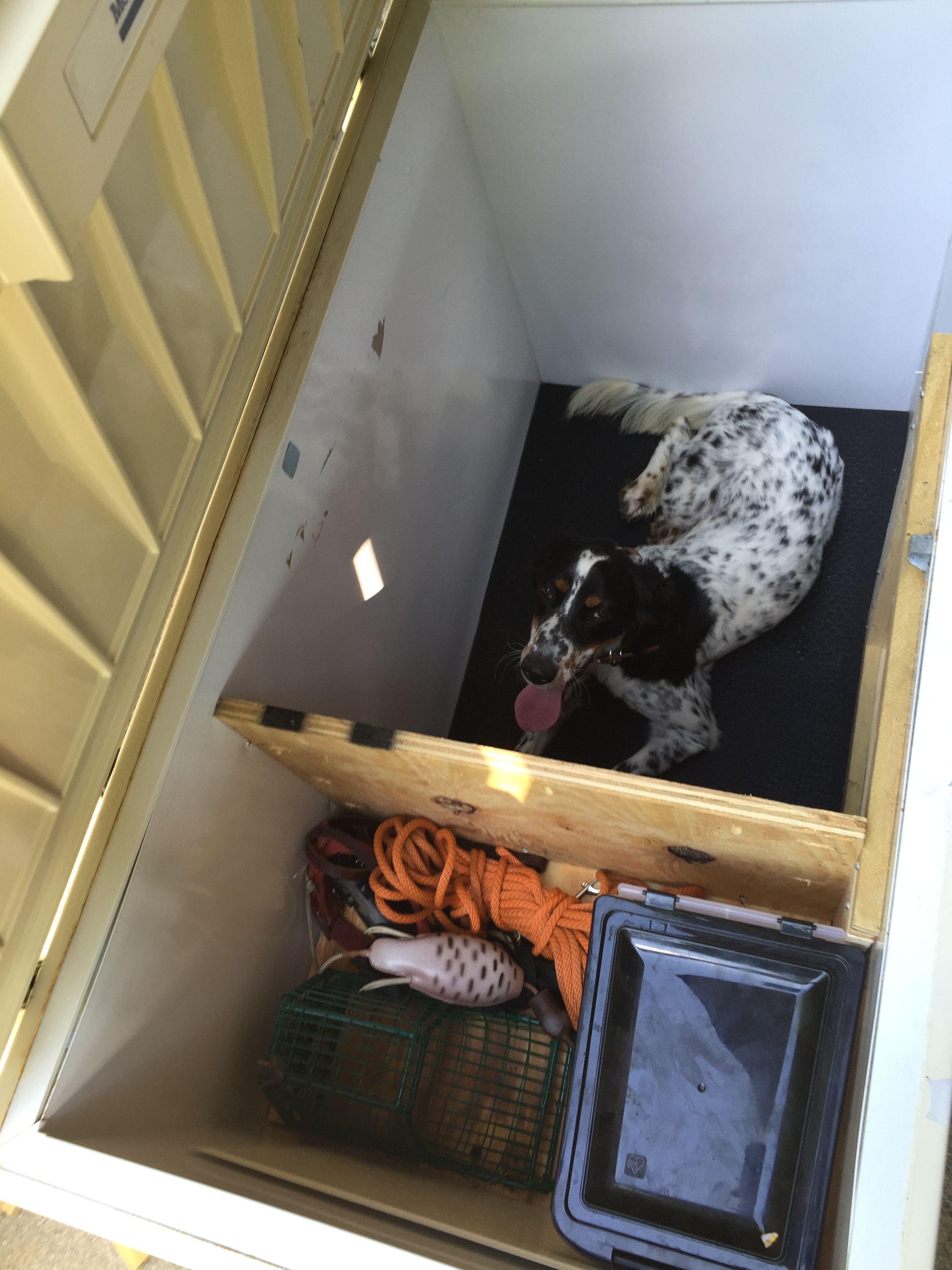 Chest Freezer Dog House Outdoor Dog House Dog House Dog Yard