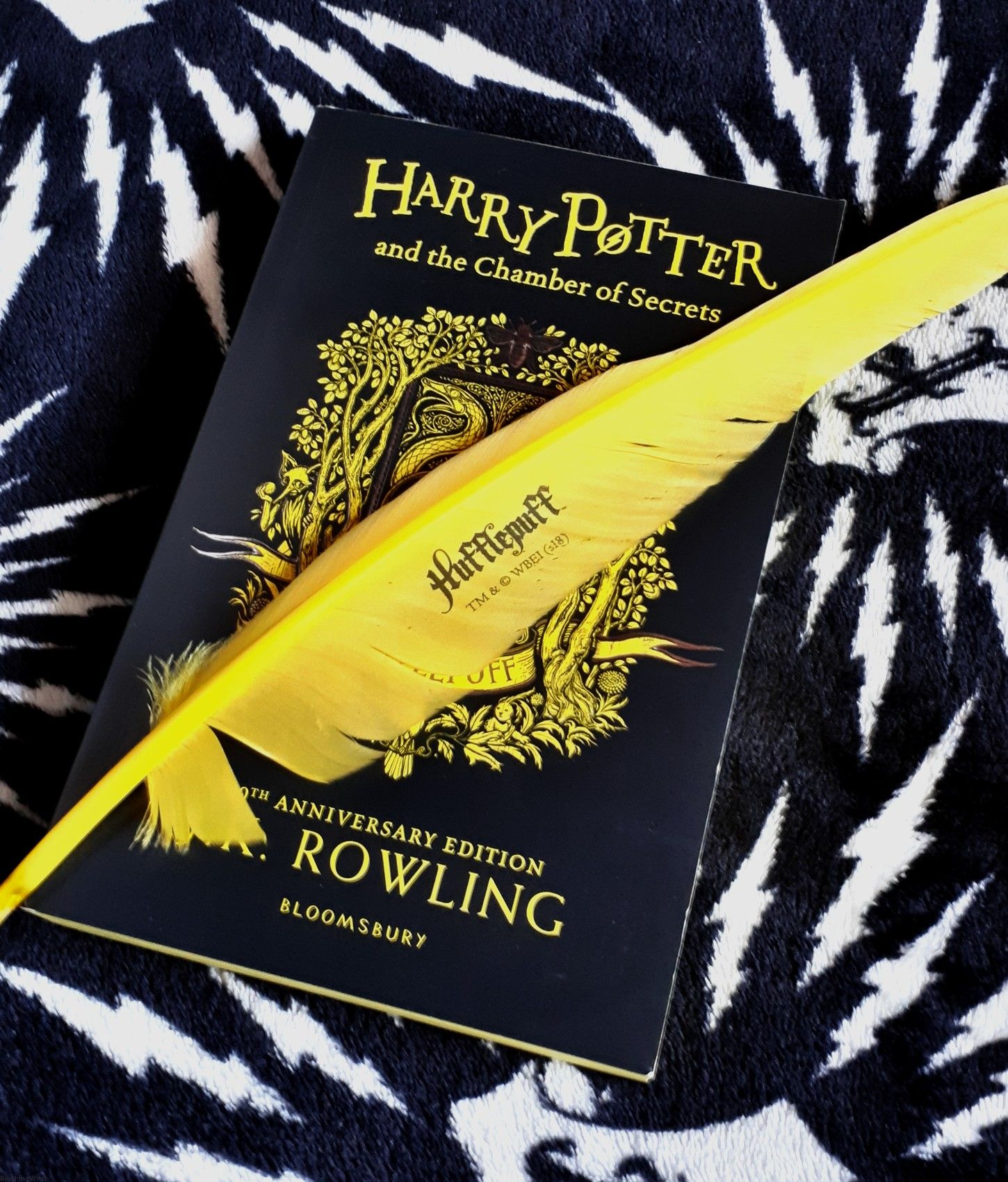 harry potter and the chamber of secrets hufflepuff edition