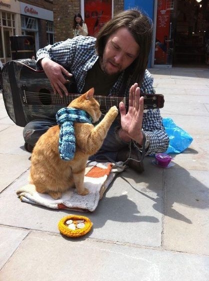 不機嫌顔のネコ・行動が変なネコ・写真家ネコなど特徴的すぎてオンライン上で有名になったネコ10匹 - GIGAZINE