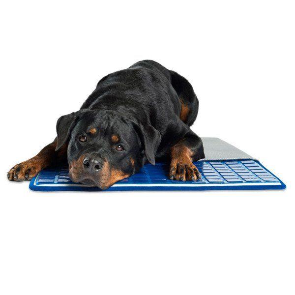 Pet Cooling Pad Pets Pet Cooling Pad Pet Cooling Mat Dog Pads