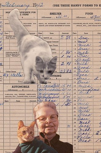 Economic Necessity Did Not Dictate a Diet of  Cat Food, But Dorothy Happened To Find It a Delicacy! | by Angie Naron