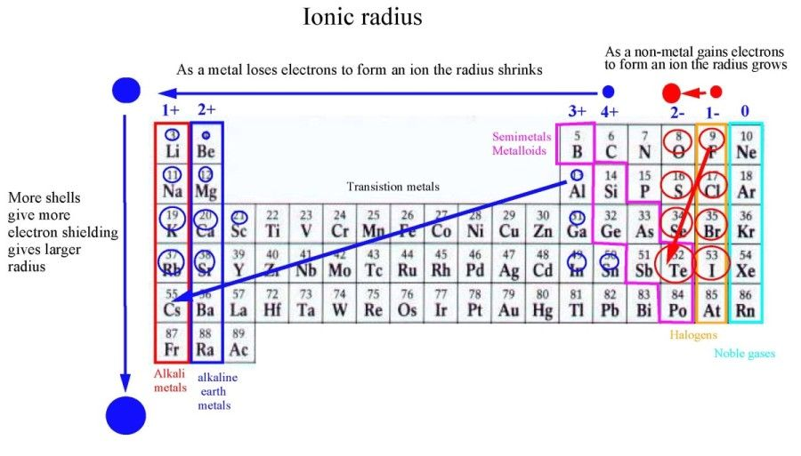 Electron Charge Periodic Table  Google Search  Anatomy