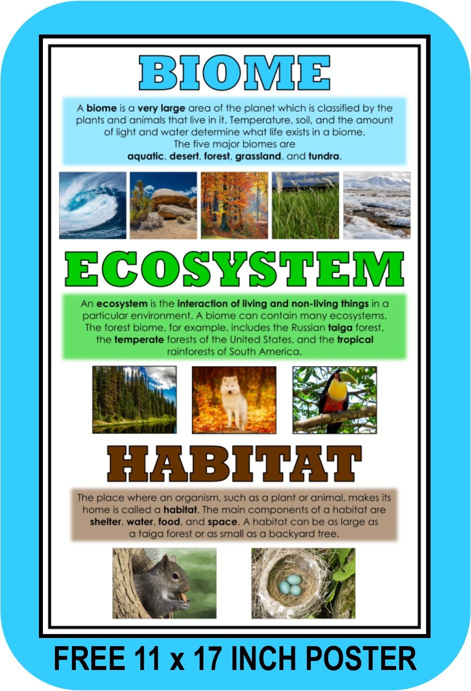 Introduce The Differences Between Biomes Ecosystems And Habitats With This Free Poster From Let S Get Real Biomes Teaching Biomes Ecosystems Projects [ 1383 x 944 Pixel ]