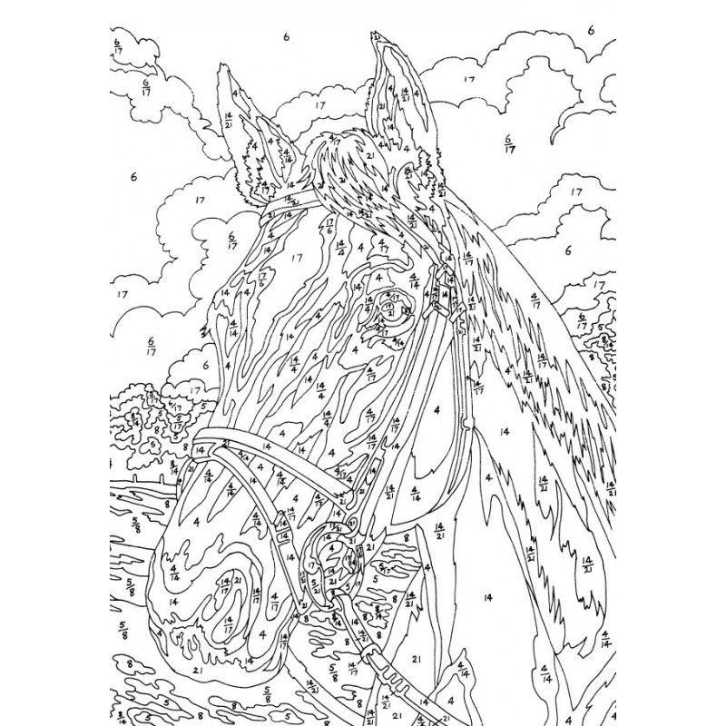 Pferdekopf-Malen-nach-Zahlen-Klein-Mammut_b3.jpg (800×800) | color ...
