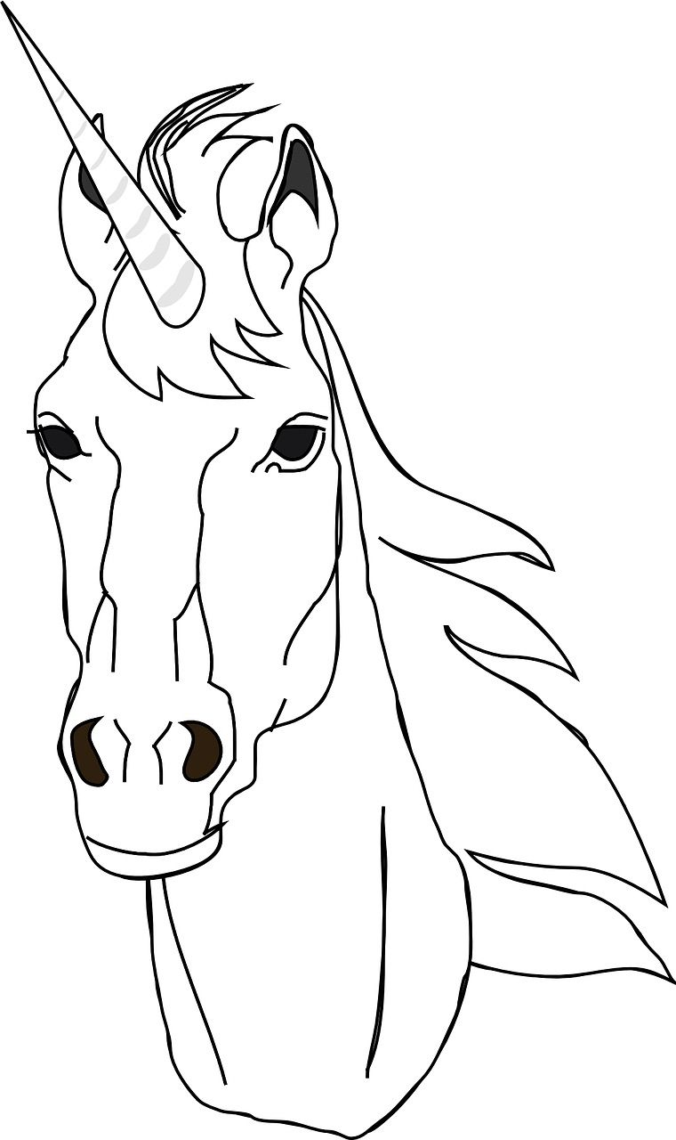 Free Coloring Pages And Printables Horse Coloring Pages Horse Coloring Horse Face [ 1280 x 760 Pixel ]