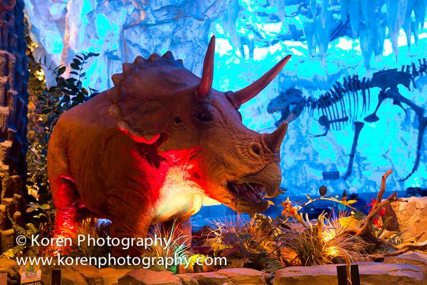 T rex at downtown disney magical memory maker for Disney dining reservations t rex