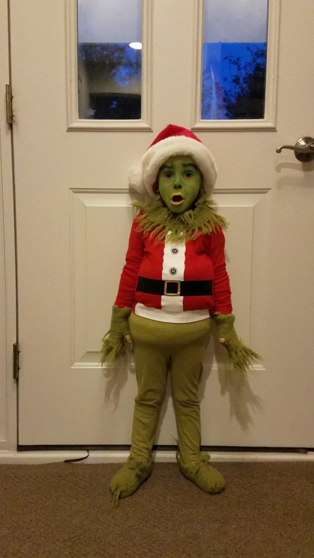 Mini Grinch Grinch fancy dress, Halloween costume