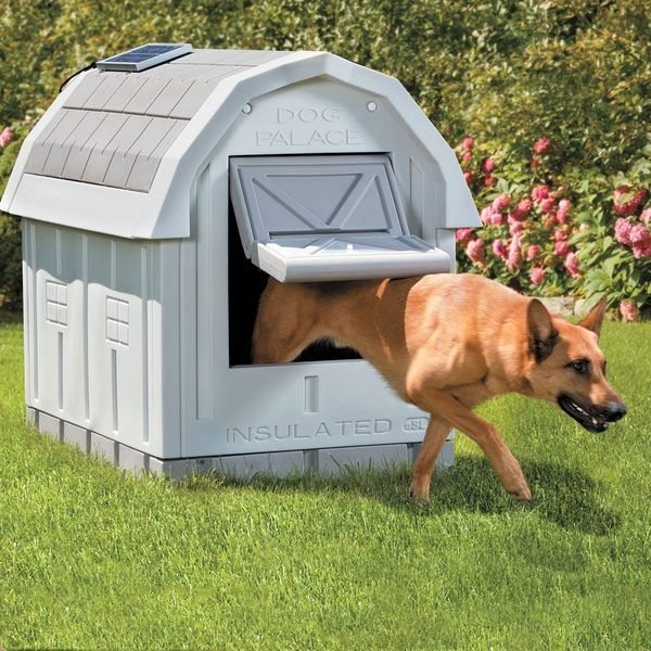 Insulated Dog House Ideas For The Garden Insulated Dog House