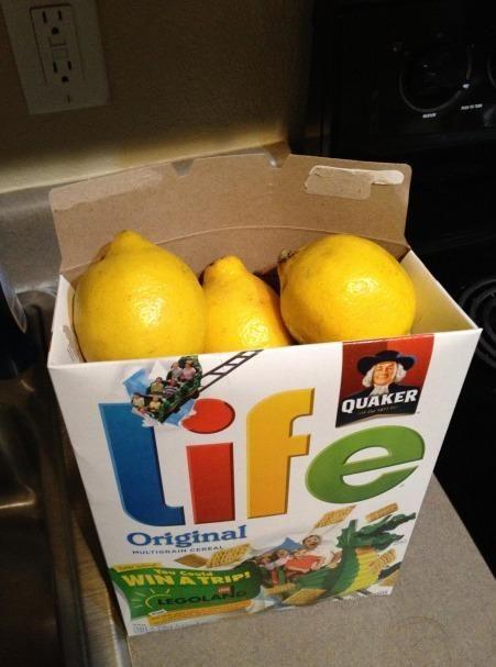 Sometimes life gives you lemons... | Elephant gifts, White ...