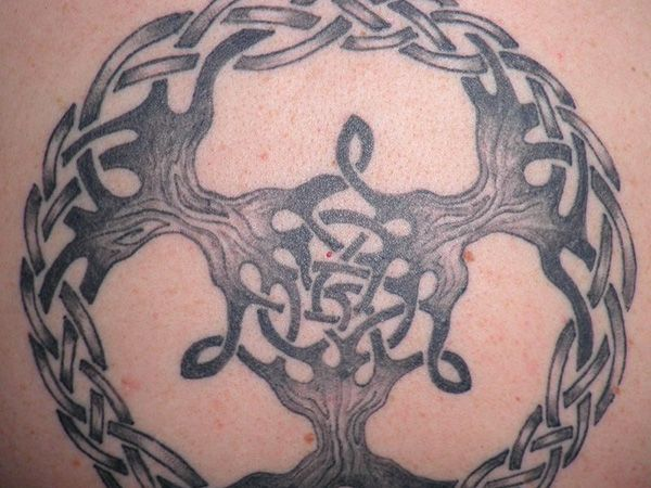 25 terrific celtic tree of life tattoo ideas slodive for Independent tattoo lincoln ne