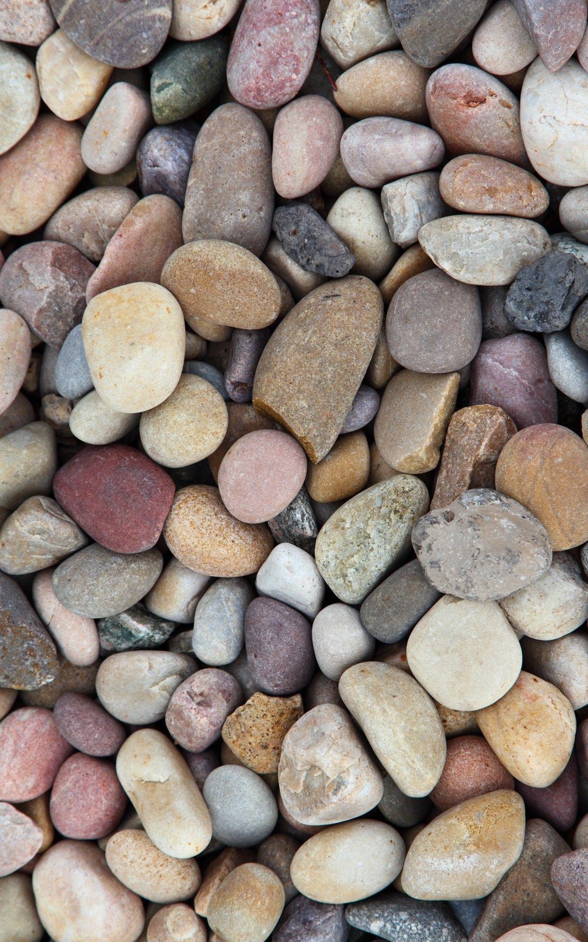 Rocks Stones Cobblestone Pebble Sands Wallpaper Hd