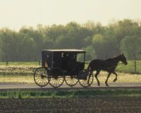 Quilt Gardens Tour in Elkhart County, Northern Indiana | Amish Country