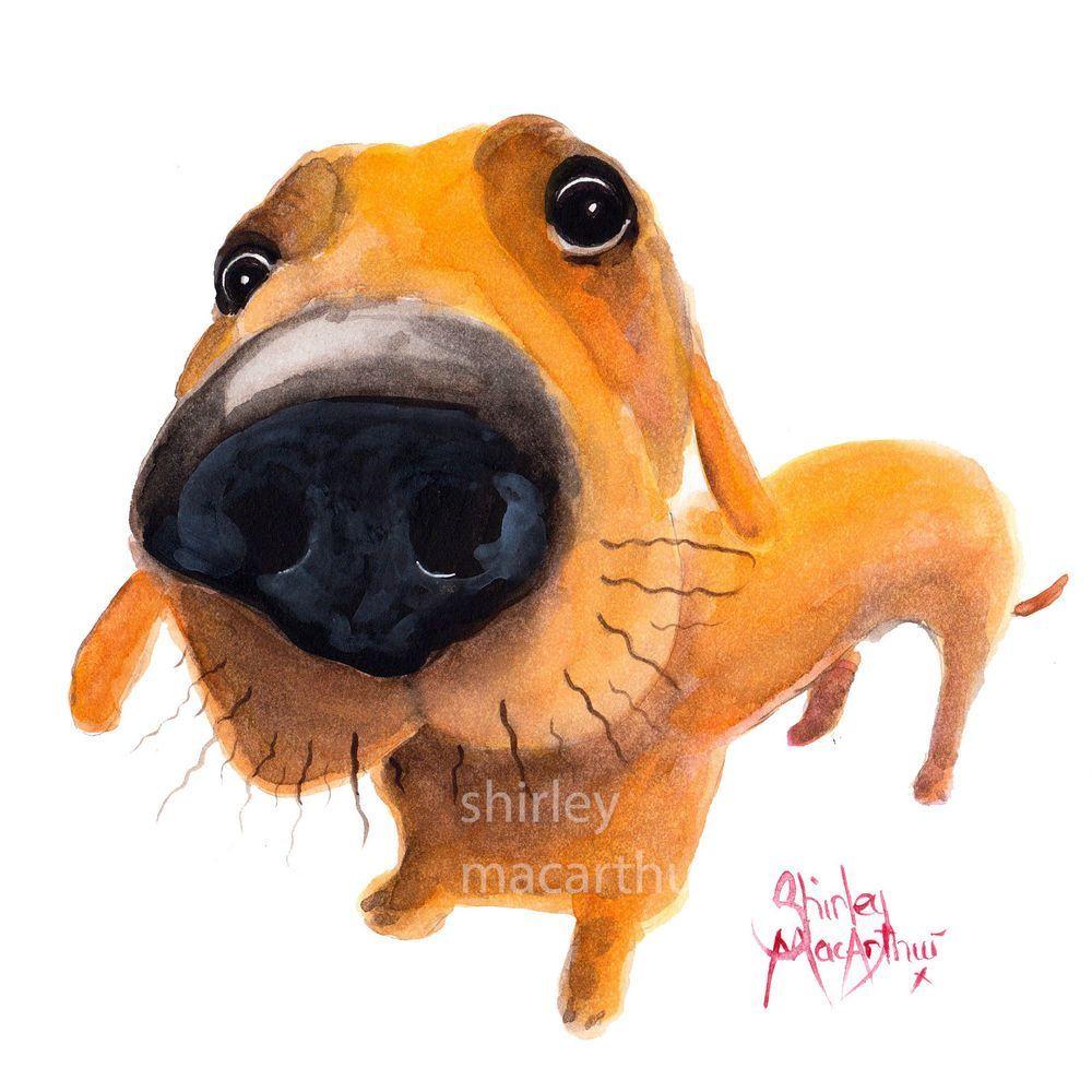 Nosey Dog Prints Of Original Painting Diddly Derek Dachshund