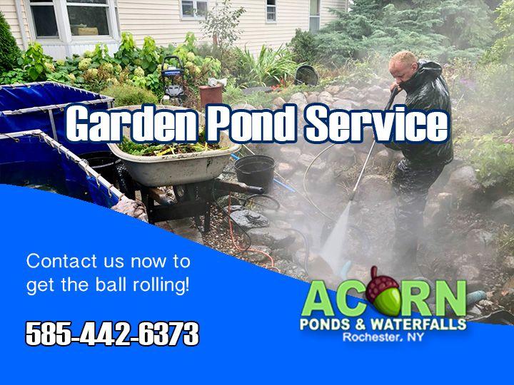Garden Pond Service Company Rochester Ny New York Near 640 x 480