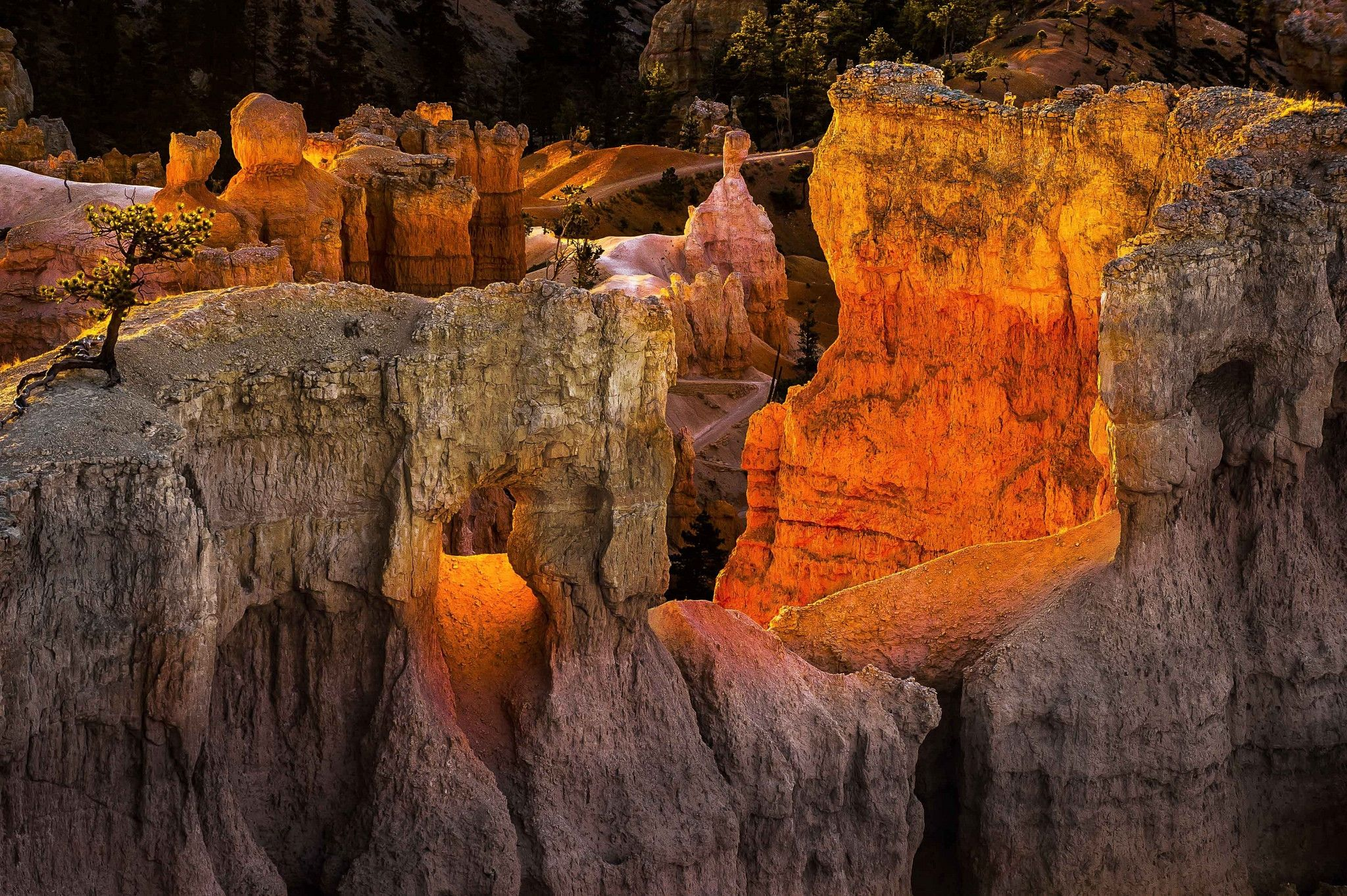 bryce canyon national park utah wallpaper photo and images - http