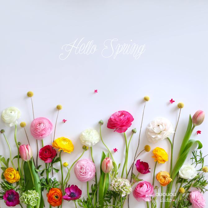 Hello spring mod le t l chargeable printemps studios et fonds d 39 cran d 39 ordinateur - 1er jour du printemps ...