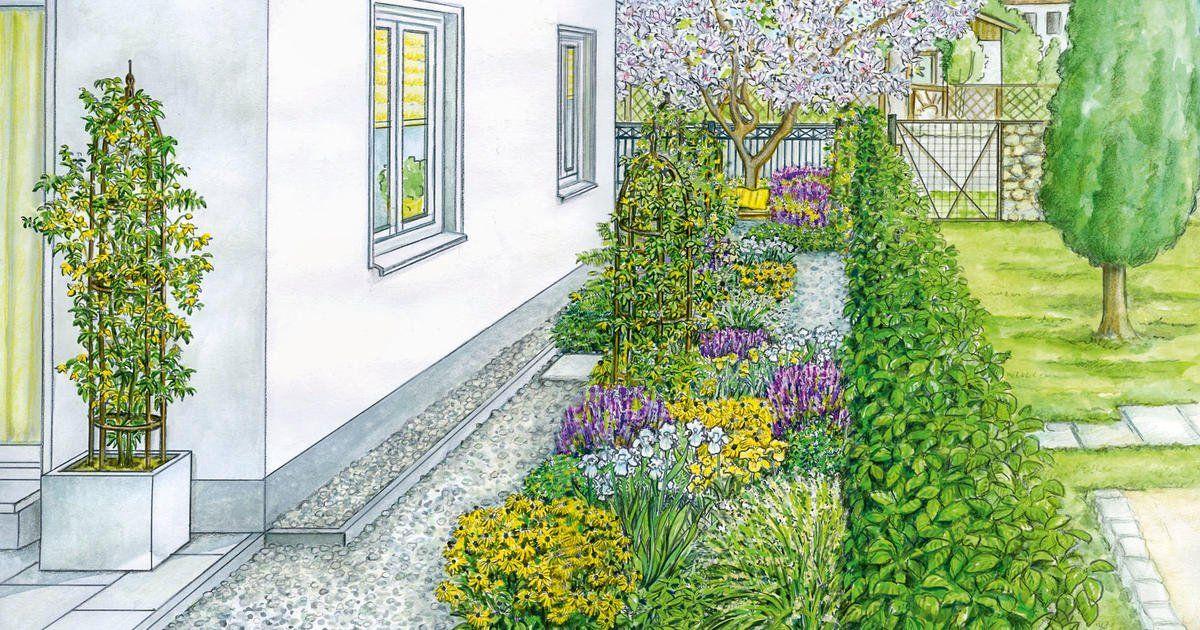 1 Garten 2 Ideen Eine Blutenreicher Durchgang An Der Hauswand Schmaler Garten Bepflanzung Garten
