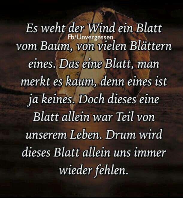 Image Result For Zitate Von Goethe Trauer