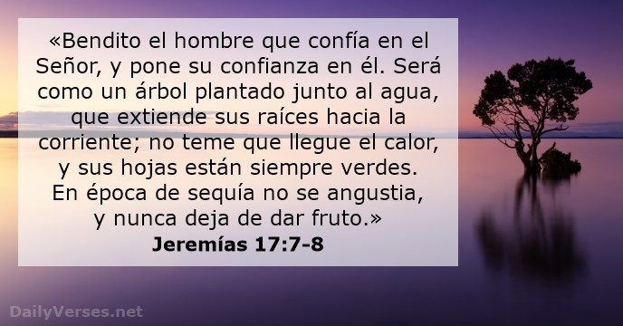 Versiculos De La Biblia De Animo: «Bendito El Hombre Que Confía En El Señor, Y Pone Su