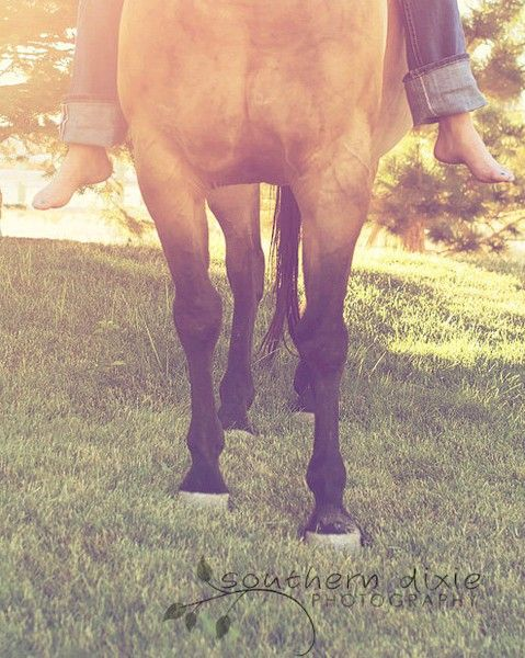 equine love.  #this-has-got-to-be-the-good-life