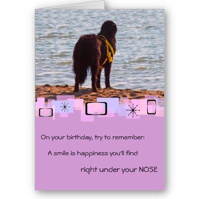 Newfoundland Birthday Greeting Card   Zazzle.com ...
