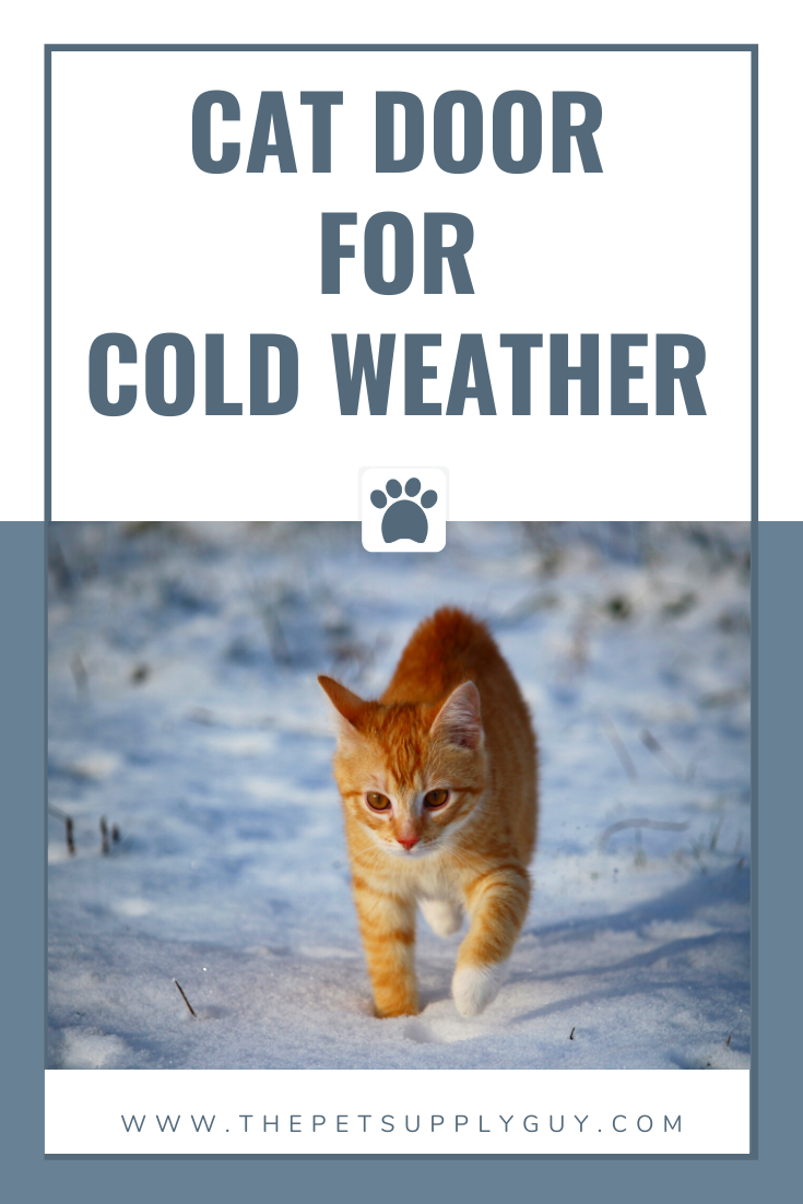 Best Cat Door For Cold Weather The Pet Supply Guy In 2020 Cats Cat Door Cool Cats