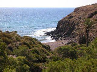 Cala De Los Toros Parques Naturales Almería Calas