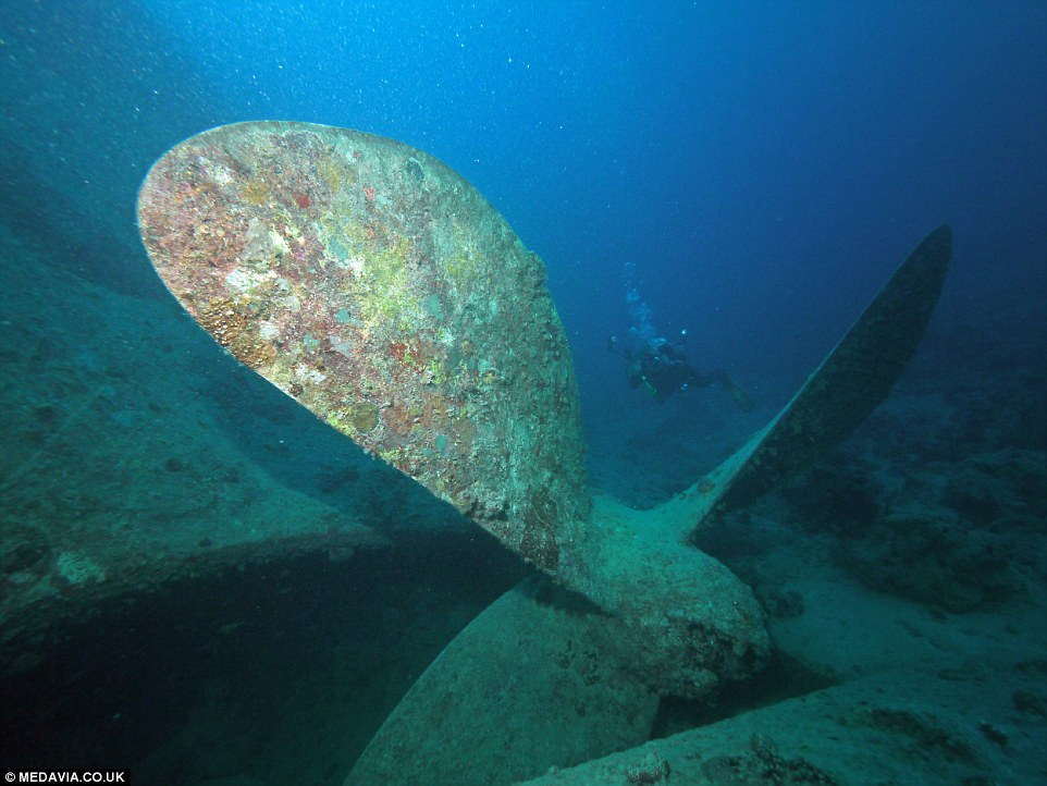Treasure Trove Of Classic Cars At The Bottom Of The Sea The British Merchant Navy Ship Carrying Military Vehicles That Was Sunk In The Red Sea During The Second World War