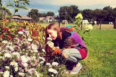 Flores na fazenda