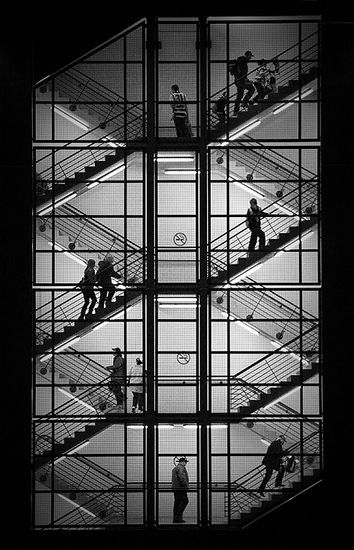© Adrian Donoghue