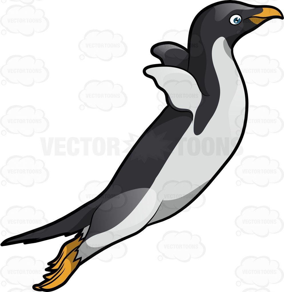 20+ Clipart Animal Feathers Penguin
