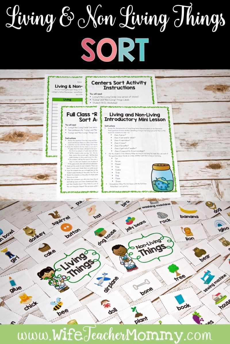 Students Learn About Living And Non Living Things With This Science Lesson And Sort Activity The Sort Activity Can Sorting Activities Activities Mini Lessons [ 1199 x 800 Pixel ]