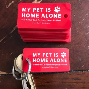 Emergency Pet Keychain Pet keychain, Pets, Emergency