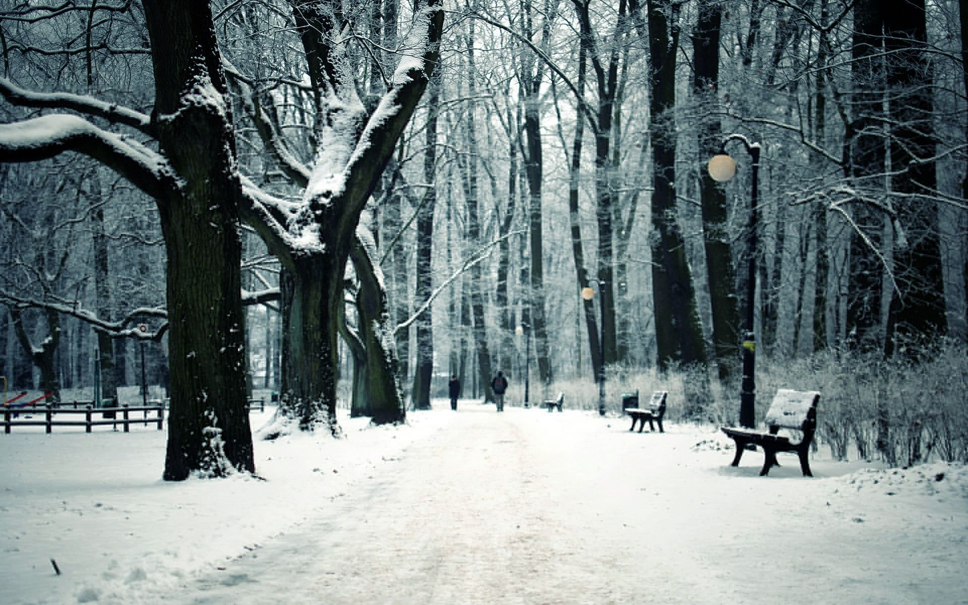 Pin On Wallpapers Hd wallpaper winter snow train forest
