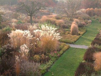 Schau und sichtungsgarten hermannshof e v pflanze for Pflanzengestaltung garten