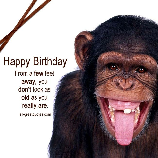 Happy Birthday - From a few feet away | Free Funny ...