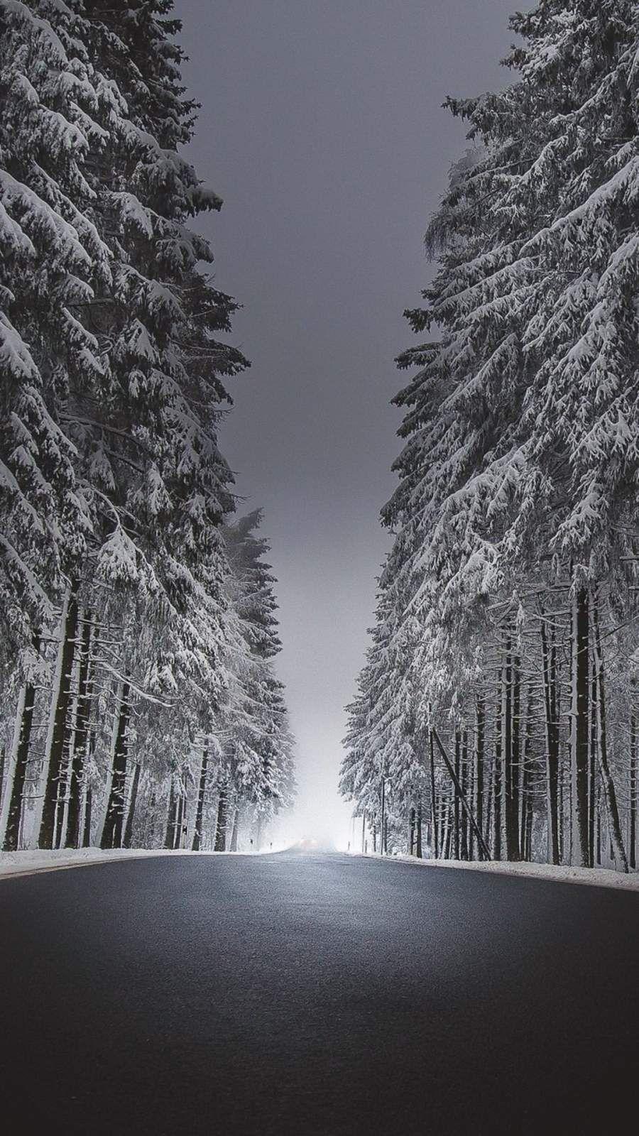 Winter Road Asphalt Snow Iphone Wallpaper Iphone Wallpaper Images Iphone Wallpaper Wallpaper Hd wallpaper snow winter road asphalt