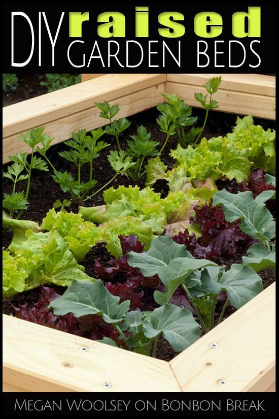 DIY Raised Garden Beds Camping,Hiking,Gardening & More in the Backyard,creative camping #beetanlegen