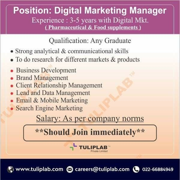 Position Digital Marketing Manager Experience 3 to 5 years - salary on resume